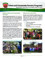 Urban and Community Forestry Programs - Resources for Trees in Our Communities, Cities and Towns