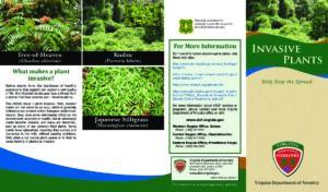 Invasive Plants - Help Stop the Spread