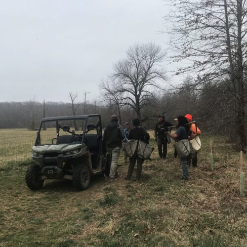 Field Notes: Buffer Benefits for River and Trail