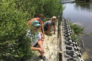 S.O.S. – Save Our Shorelines!
